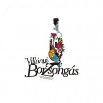 Borzsongas_ogo